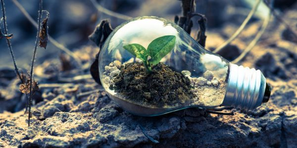 Umwelt zuliebe